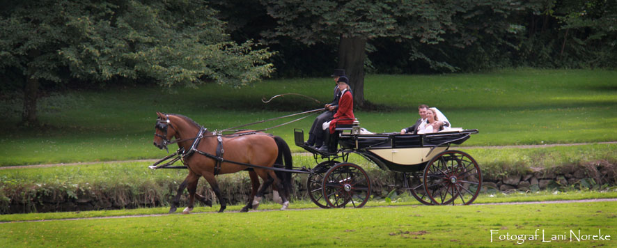 horse-drawn carriage through the castle grounds